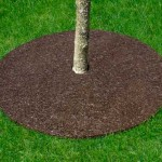 A Rubber Mulch Tree Ring Will Help Your Tree!